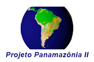 Monitoramento da Cobertura Vegetal da Amazônia Sul Americana